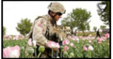 Milit�rstyrkor i Afghanistan skyddar och hj�lper opiumhandel